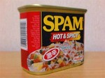 spam-hot_and_spicy.jpg